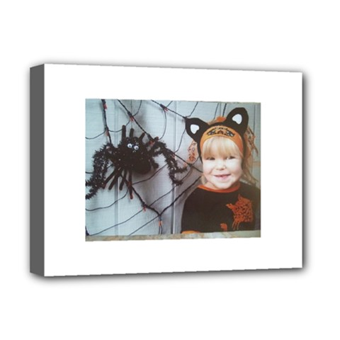 Spider Baby Deluxe Canvas 16  X 12  (framed)