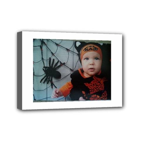 Wp 003147 2 Mini Canvas 7  x 5  (Framed)