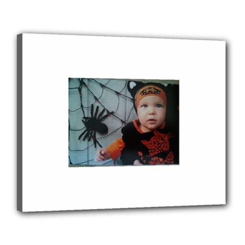 Wp 003147 2 Canvas 20  x 16  (Framed)