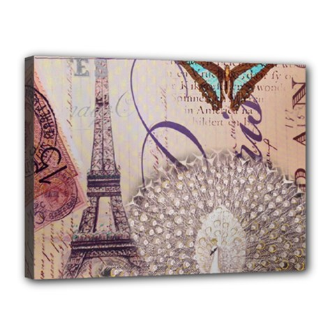 White Peacock Paris Eiffel Tower Vintage Bird Butterfly French Botanical Art Canvas 16  x 12  (Framed)