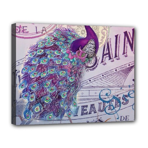 French Scripts  Purple Peacock Floral Paris Decor Canvas 14  x 11  (Framed)