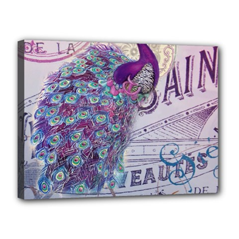 French Scripts  Purple Peacock Floral Paris Decor Canvas 16  x 12  (Framed)