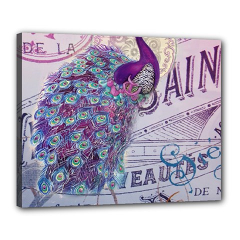 French Scripts  Purple Peacock Floral Paris Decor Canvas 20  X 16  (framed)
