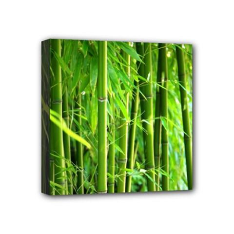 Bamboo Mini Canvas 4  x 4  (Framed)