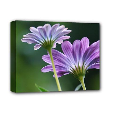 Flower Deluxe Canvas 14  x 11  (Framed)