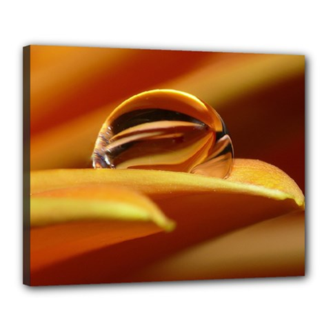 Waterdrop Canvas 20  X 16  (framed)