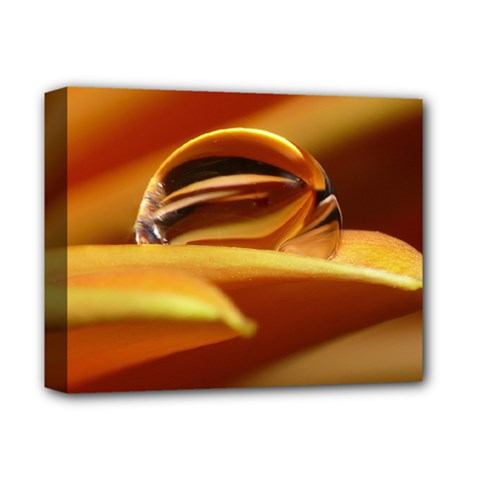 Waterdrop Deluxe Canvas 14  X 11  (framed)