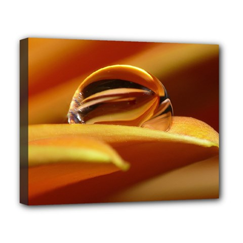 Waterdrop Deluxe Canvas 20  x 16  (Framed)