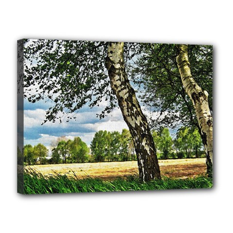 Trees Canvas 16  x 12  (Framed)