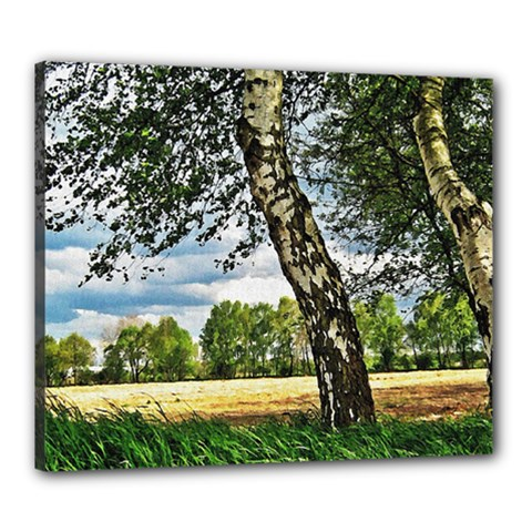 Trees Canvas 24  x 20  (Framed)