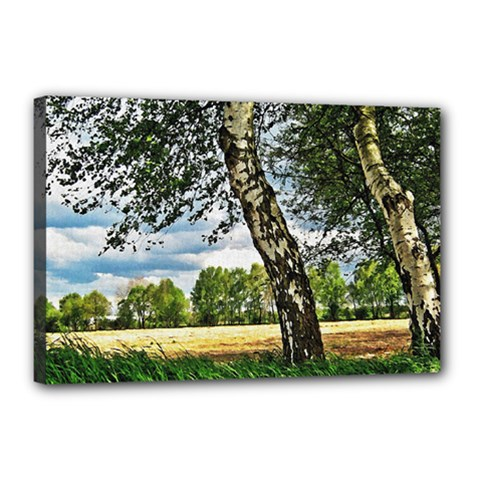 Trees Canvas 18  x 12  (Framed)