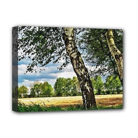 Trees Deluxe Canvas 16  X 12  (framed)