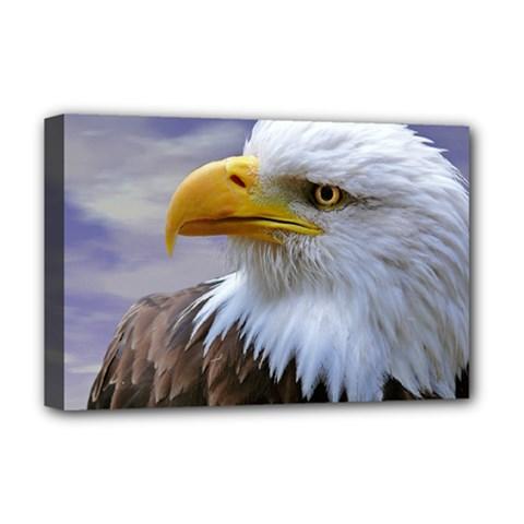 Bald Eagle Deluxe Canvas 18  X 12  (framed)