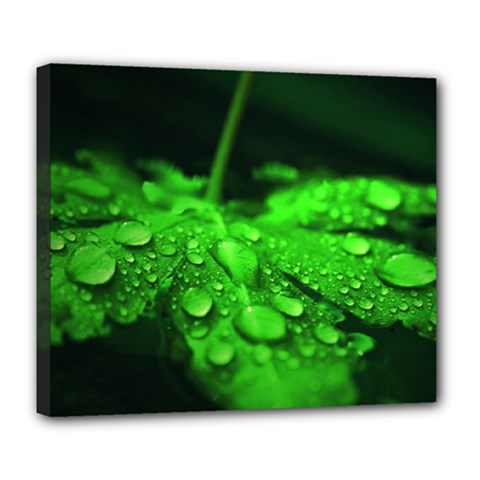 Waterdrops Deluxe Canvas 24  X 20  (framed)