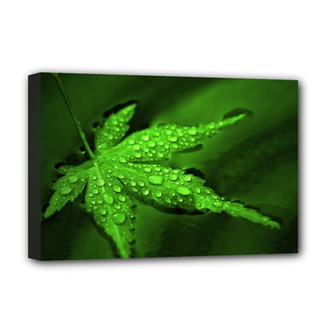 Leaf With Drops Deluxe Canvas 18  x 12  (Framed)