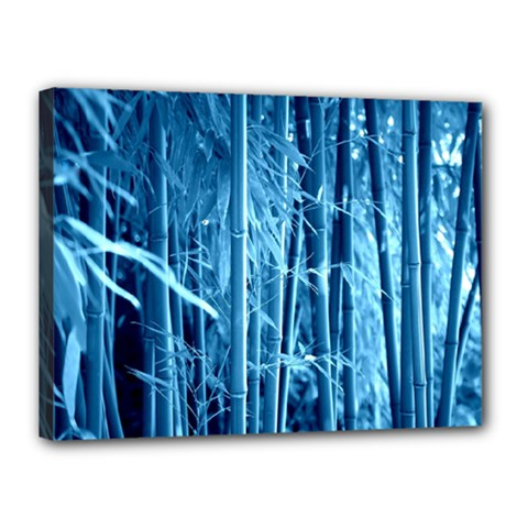 Blue Bamboo Canvas 16  x 12  (Framed)