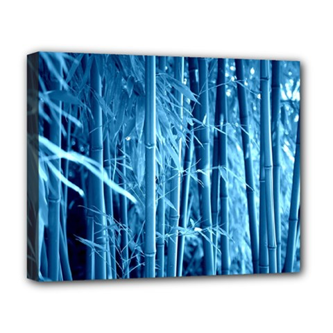 Blue Bamboo Deluxe Canvas 20  X 16  (framed)