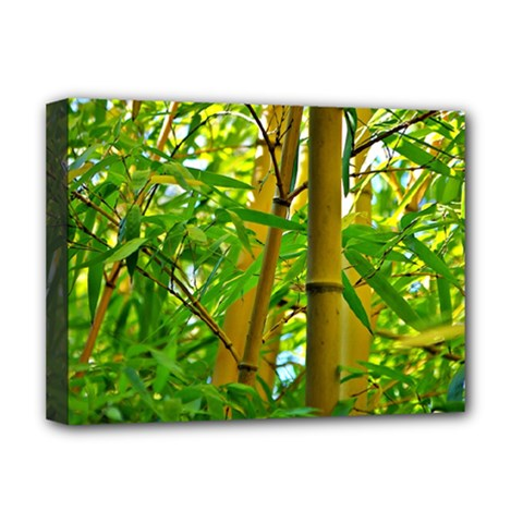 Bamboo Deluxe Canvas 16  x 12  (Framed)