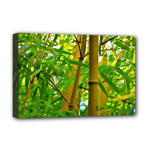 Bamboo Deluxe Canvas 18  X 12  (framed)