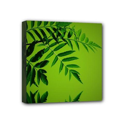 Leaf Mini Canvas 4  X 4  (framed)