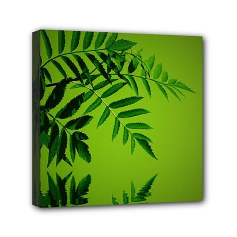 Leaf Mini Canvas 6  X 6  (framed)