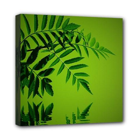Leaf Mini Canvas 8  X 8  (framed)