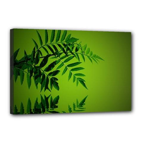 Leaf Canvas 18  X 12  (framed)