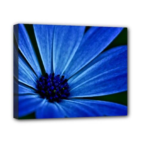 Flower Canvas 10  x 8  (Framed)