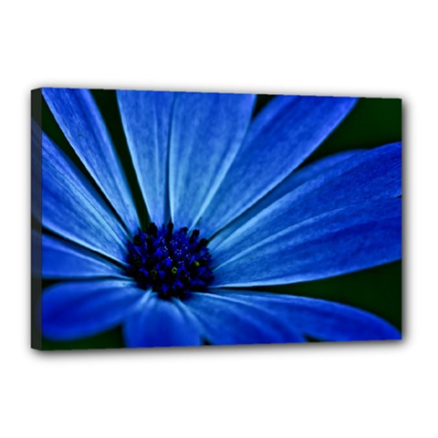 Flower Canvas 18  X 12  (framed)