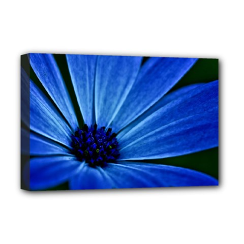 Flower Deluxe Canvas 18  x 12  (Framed)