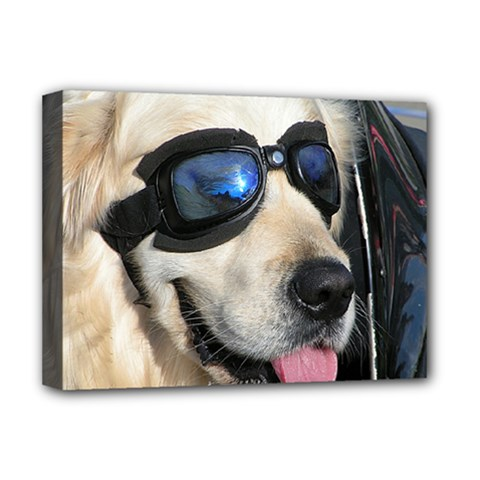Cool Dog  Deluxe Canvas 16  x 12  (Framed)