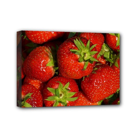 Strawberry  Mini Canvas 7  x 5  (Framed)