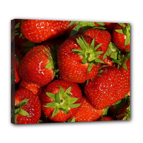 Strawberry  Deluxe Canvas 24  x 20  (Framed)