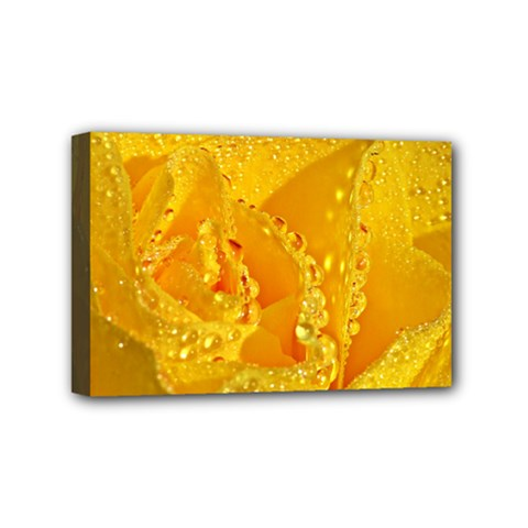 Waterdrops Mini Canvas 6  x 4  (Framed)
