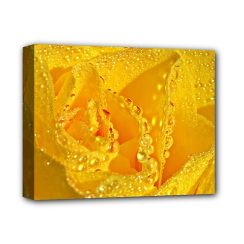 Waterdrops Deluxe Canvas 14  x 11  (Framed)
