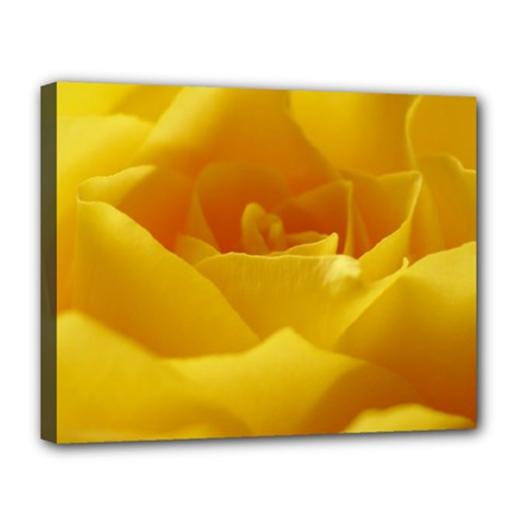 Yellow Rose Canvas 14  x 11  (Framed)