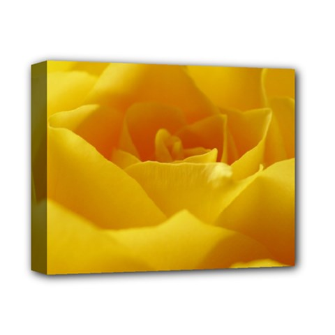 Yellow Rose Deluxe Canvas 14  x 11  (Framed)