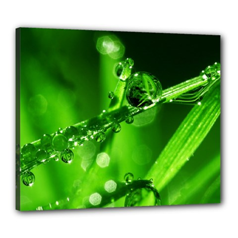 Waterdrops Canvas 24  x 20  (Framed)