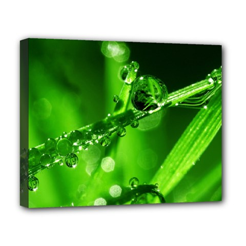 Waterdrops Deluxe Canvas 20  X 16  (framed)