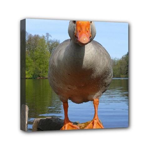 Geese Mini Canvas 6  x 6  (Framed)