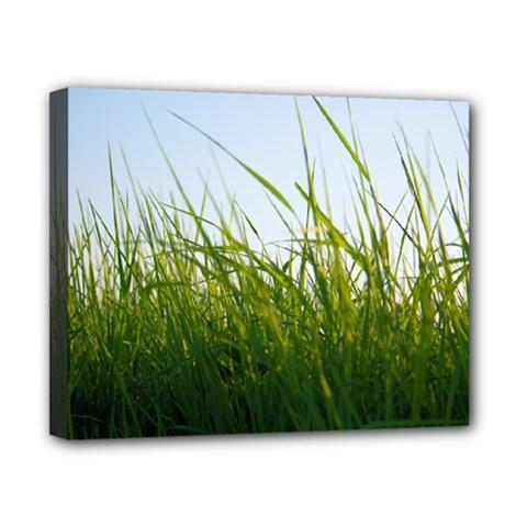 Grass Canvas 10  x 8  (Framed)