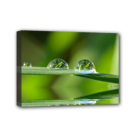 Waterdrops Mini Canvas 7  X 5  (framed)