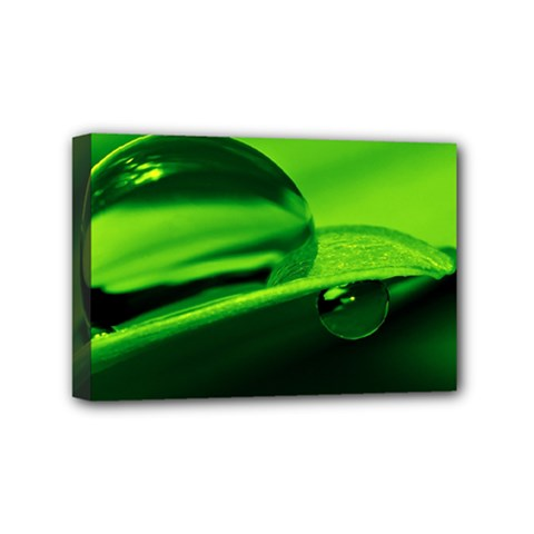 Green Drop Mini Canvas 6  x 4  (Framed)