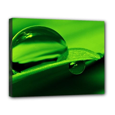 Green Drop Canvas 14  X 11  (framed)