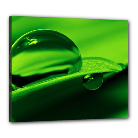 Green Drop Canvas 24  x 20  (Framed)