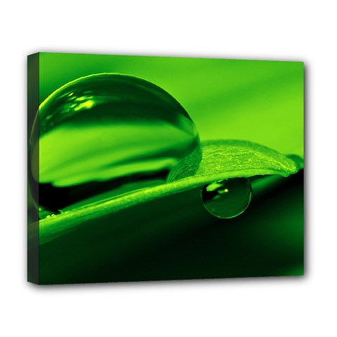 Green Drop Deluxe Canvas 20  X 16  (framed)