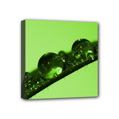 Green Drops Mini Canvas 4  X 4  (framed)