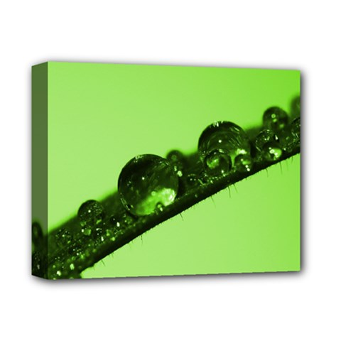Green Drops Deluxe Canvas 14  x 11  (Framed)