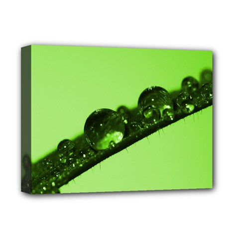 Green Drops Deluxe Canvas 16  x 12  (Framed)
