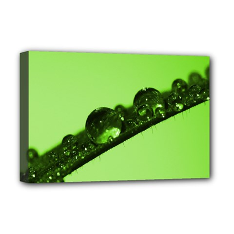Green Drops Deluxe Canvas 18  x 12  (Framed)